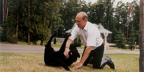 Vladimir Putin and Koni