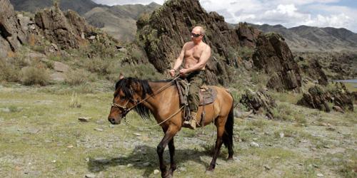Vladimir Putin and random horse