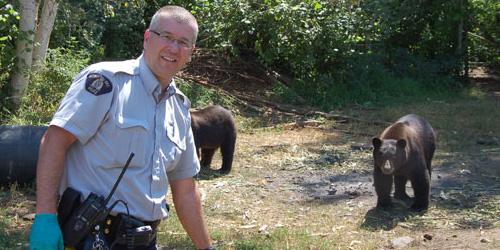 marijuana and cops and bears, oh my