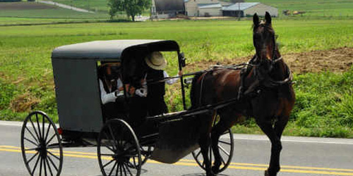 Amish buggy of indeterminate make and model